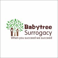 Surrogacy Agency, California, USA