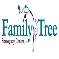 Surrogacy Agency, San Diego, California, USA